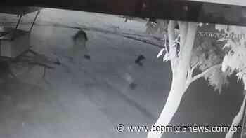 Vídeo: crianças são flagradas furtando plantas de jardim em Aquidauana - Top Mídia News