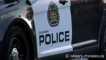 Calgary police dog bites 'innocent bystander' during 'high-risk arrest': CPS - CTV Toronto