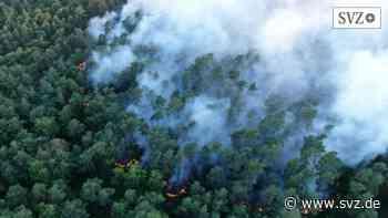 Lage nach Regenfällen entspannt: A14 wurde nach Waldbrand bei Wöbbelin wieder freigegeben | svz.de - svz.de