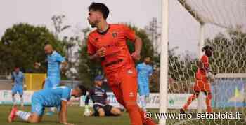 Serie D. I Lupi chiudono con un ko a Pineto (3-2), sconfitta ricca di gol anche per il Vastogirardi. Rimontata l'Agnonese, pari e ultimo posto - Molise Tabloid