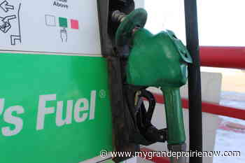 No relief likely as fuel prices continue to climb