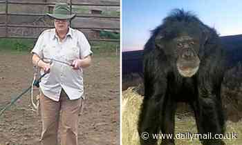 Pet chimpanzee is shot dead by cops after attacking 68-year-old owner's daughter on Oregon ranch