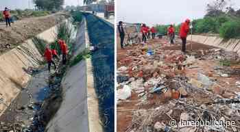 Lambayeque: inician limpieza y mantenimiento de canal de regadío en Mochumí - LaRepública.pe