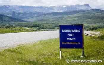 Coal companies hope to move forward with mines in Alberta despite roadblocks