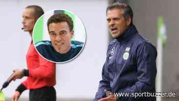 Neue Jobs für zwei Ex-Wolfsburg-Trainer? Havelse denkt an Bürger, Ismaël vor Unterschrift bei West Brom - Sportbuzzer