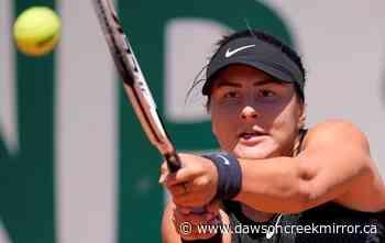 Canadian Bianca Andreescu wins opener at Wimbledon tune-up event - Dawson Creek Mirror