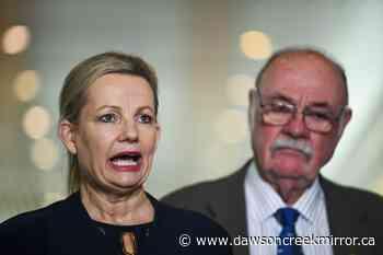 Australia fights UN downgrade of Great Barrier Reef health - Dawson Creek Mirror