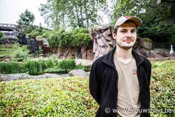 Drie pasgeboren welpjes in Zoo startschot van nieuw kweekprogramma