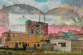 Gli studenti Enaip raccontano la periferia di Novara in un progetto di Street photography - EnAIP Piemonte