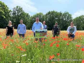 Gemeinsam für mehr Artenvielfalt: Mehrjährige Blühstreifen in der Gemeinde Weeze - Weeze - Lokalkompass.de