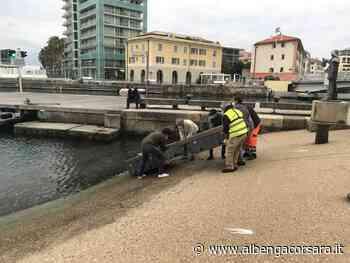 Savona, progetto Qualiporti: soluzioni ecologiche innovative per le acque marine - AlbengaCorsara News