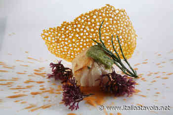 Rana pescatrice con crema di lenticchie rosse e la mia bagna cauda - Italia a Tavola