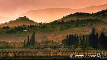 """All'Asolo Prosecco spunta l'idea del Rosé Docg e il Consorzio si divide. Dalla Rosa: """"Perché speculare? La scommessa è l'identità dei nostri vini"""" - Qdpnews"""