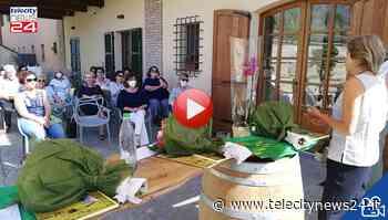 Le donne di Confagricoltura Alessandria e Piemonte in assemblea a Novi Ligure - Telecity News 24