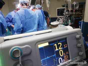 Donazione degli organi: la situazione ad Alessandria e la scelta informativa del Comune - Radiogold