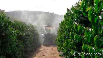 Tecnologia de ponta da Syngenta facilita pulverização na cafeicultura de montanha - G1