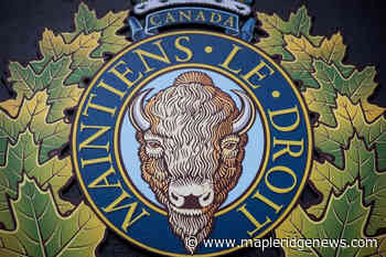 Conviction thrown out for supposed leader of Maple Ridge cannabis smuggling conspiracy – Maple Ridge News - Maple Ridge News