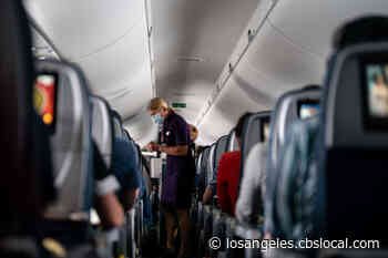 Airlines, Aviation Unions Call For Harsher Penalties For Unruly Passengers - CBS Los Angeles