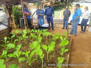 Birigui lança Hortas + Produtivas – Folha da Região - Folha da Região
