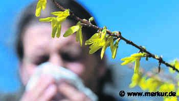 Garmisch-Partenkirchen: Mann (80) niest - dann wird er geschlagen - Merkur.de