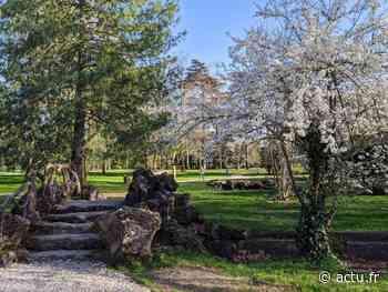 Sud-Gironde : un festival de spectacles gratuits au Parc Chavat à Podensac - Le Républicain