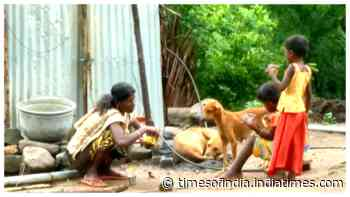 Coimbatore's Chinnampathy village untouched by COVID