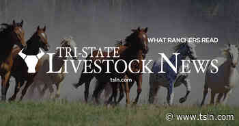 Stirling Family Memorial Ranch Rodeo: Sept 11, Ft. Pierre - Tri-State Livestock News