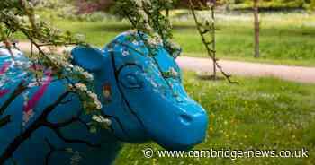 Cow prison sculpture inspired by Cambridge terror attack victim