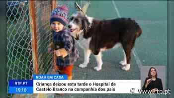 Pequeno Noah teve alta do Hospital de Castelo Branco 21 Junho 2021, 19:49 - RTP