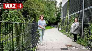"""Essener Anwohner: """"Seit Bau der Lärmschutzwand ist es laut"""" - WAZ News"""