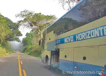 BA: Ônibus da Novo Horizonte deixa bagagens de passageiros caírem na BA-650 - REVISTA DO ÔNIBUS
