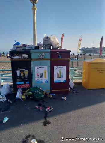 'Bin plans are a cut in the service for Brighton and Hove' - The Argus