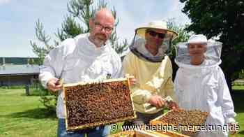 Öko-Honig aus Hohenhaslach: Aus der Honigwabe ins Glas - Bietigheimer Zeitung