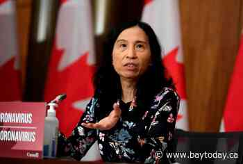 CANADA: Risk-assessment tool for fully vaccinated people coming soon, Tam promises