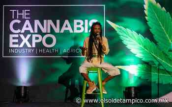 Apuestan por legislación de la marihuana en México - El Sol de Tampico