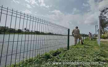 Instalan malla metálica en lagunas de Ciudad Madero - El Sol de Tampico