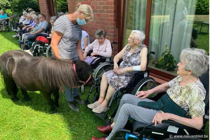 Bewoners woonzorgcentrum genieten van ponybezoek