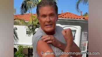 David Hasselhoff encourages people to get vaccinated - GMA