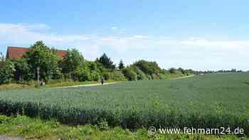 Heiligenhafen: Pläne für Grundstück am Höhenweg sollen bald vorgestellt werden - fehmarn24.de