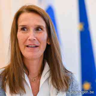 Belgisch minister Wilmès leidt Europees verzet  tegen Hongaarse wet die 'promotie' van homoseksualiteit verbiedt