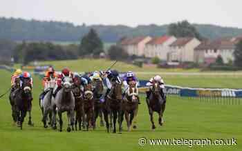 Horse racing predictions: Ayr, Newton Abbot and Newbury – Tuesday 22 June - Telegraph.co.uk