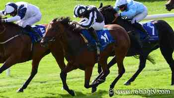 King's Stand fifth Keep Busy makes quick return at Ayr - Racing TV