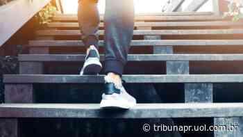 Faça seu planejamento de carreira em 9 passos. - Tribuna do Paraná