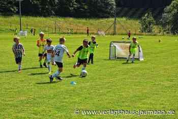 Rheinfelden: Kicker-Nachwuchs des SV Eichsel trainiert wie die Profis - Rheinfelden - www.verlagshaus-jaumann.de