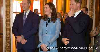 Kate to help Harry and William put on a united front at reunion