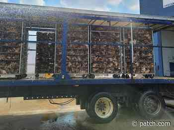 Dead Chickens Commemorated By PETA Billboard In Elgin - Patch.com