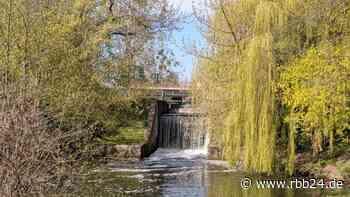 Umstrittene Namensgebung: Neuer Rad- und Gehweg in Eberswalde freigegeben - rbb24