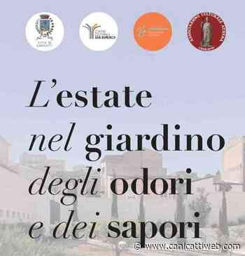 Canicattì, L'estate in Giardino: parte il palinsesto culturale - Canicatti Web Notizie