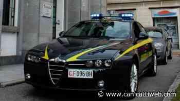 Trasportavano droga sulle ambulanze durante lockdown: 8 arresti - Canicatti Web Notizie