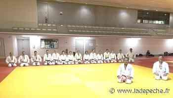 Saint-Orens-de-Gameville. Budokan judo : la reprise - ladepeche.fr